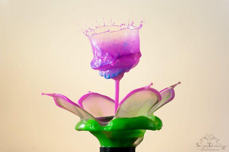 Арт, Вода, Всплеск, Жидкость, Капли, Макро, Скульптуры, Цветок Цветочек.photo preview