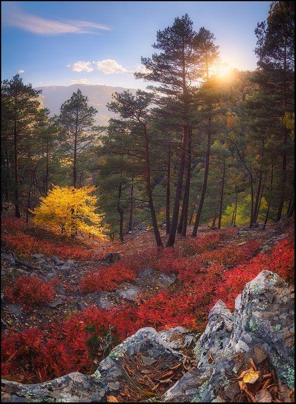 Яркие краски осеннего Архызаphoto preview