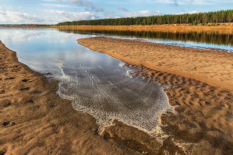 осень река пинега вода берега песок пена лес Пинега осенняяphoto preview