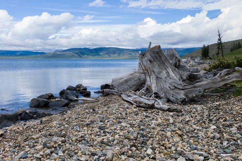 Монголия, Хубсугул озеро Хубсугул (Северная Монголия)photo preview