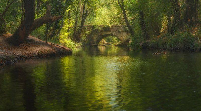 крым, севастополь, осень,река У старого акведука...photo preview