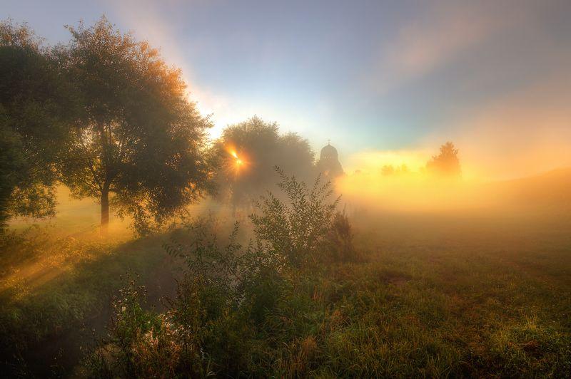 Осень, Санкт-петербург осенние туманы Муринского ручья...photo preview