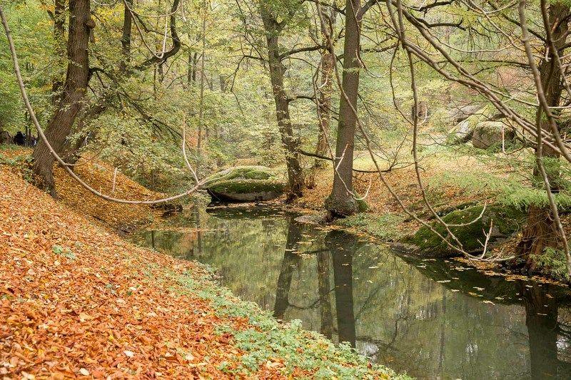 осень, парк, Умань, Софиевка, листья, ручей, скамейка Лесной ручейphoto preview
