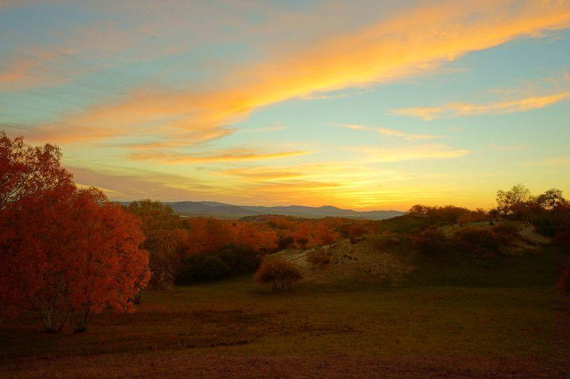 asia,china,neimenggu,basang,sunset,autumn,birch,plateau,sky,clouds,mountain,colorful Sunset of Basangphoto preview