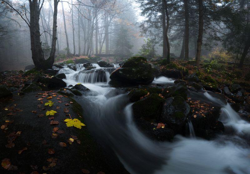 river, water, fog, mist Бистришка рекаphoto preview