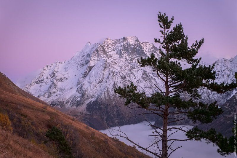 домбай, горы, кавказ,туман, осень, пейзаж,вечер,облака,вершины,россия Сиреневые сумерки в горахphoto preview