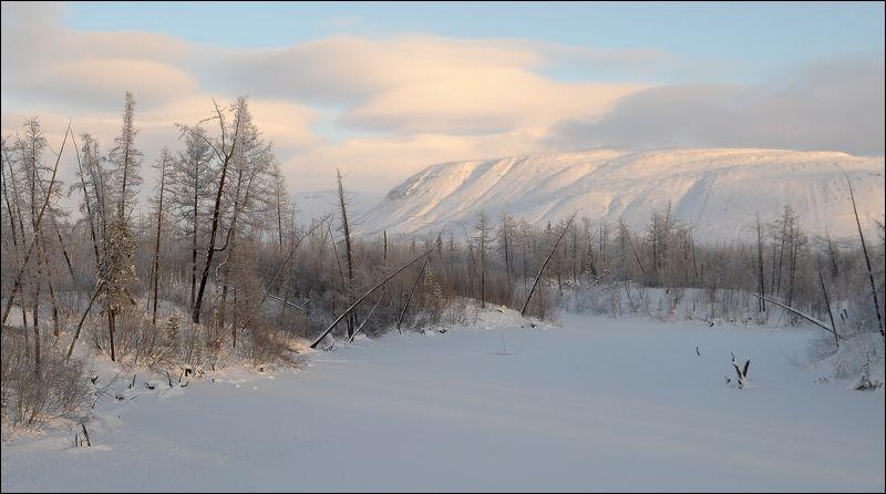 Таймыр,зима,снег И снова зимаphoto preview