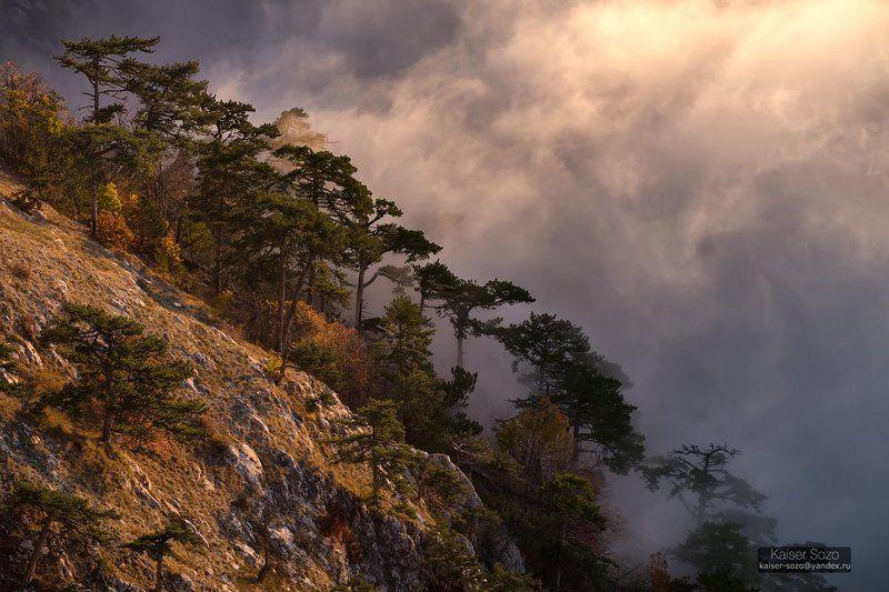 крым, ай-петри, туман, рассвет Туманы Ай-Петриphoto preview