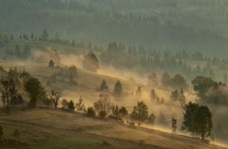 горы, карпаты, осень, туман, утро Пробуждение...photo preview