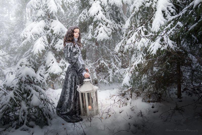 , Снежный сон...........................photo preview