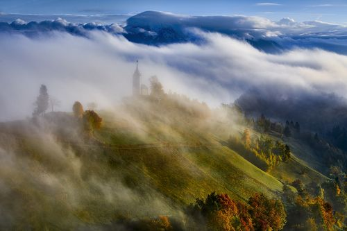 In the morning mist II