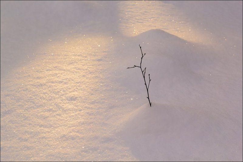 Зимние картинки)photo preview