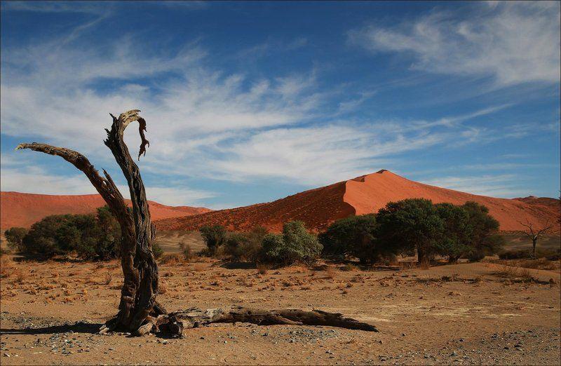 дюны, соссусфлей, намибия Полденьphoto preview