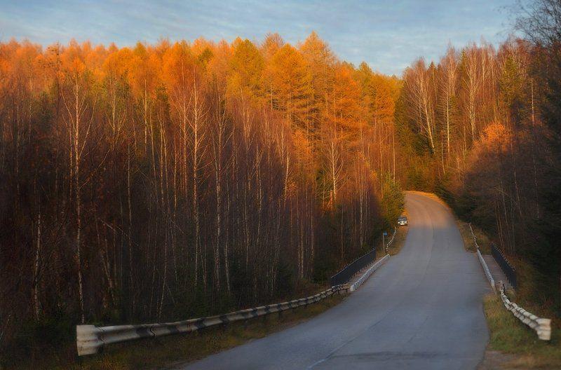 Landscape, Закат, Осень, Питер, Рощино Рощино....photo preview