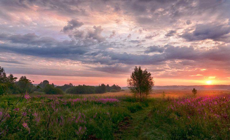 Утро в Сельцеphoto preview