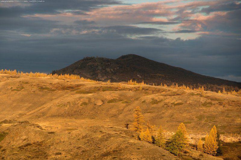 долина, чуя, алтай, россия, река, холмы, рассвет, солнце, желтый, синий, небо, облака, холм, лиственница, дерево, деревья  Рассвет в Курайской степиphoto preview
