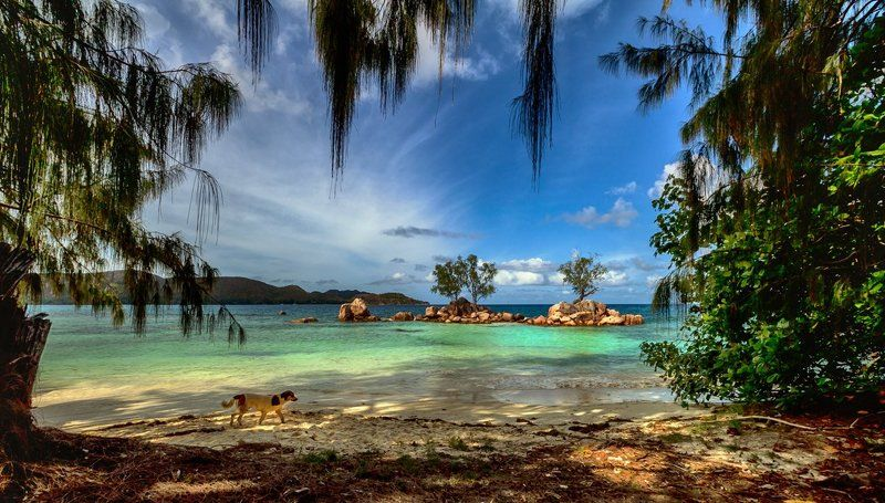 На островах, затерянных в океанеphoto preview