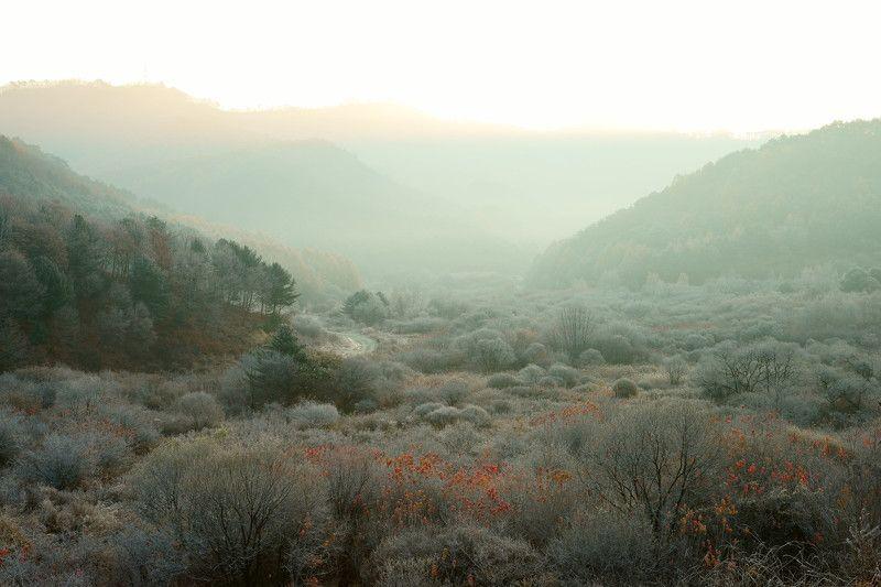 asia,korea,south korea,gangwondo province,nature,mountain,valley,autumn,frost,fog,light Frosty mountain valleyphoto preview