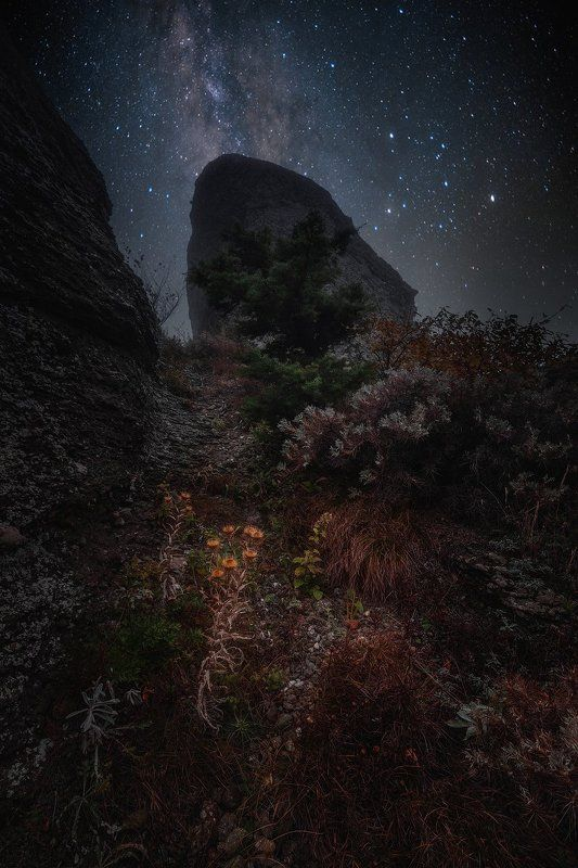 Где-то в горах Крымаphoto preview