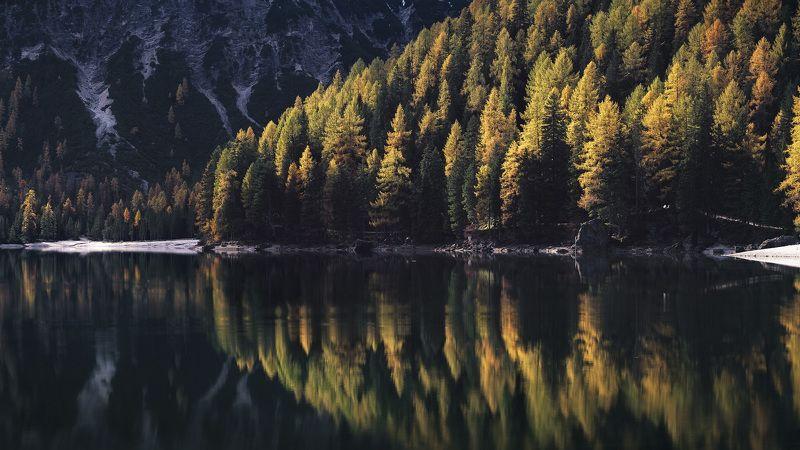 Осенняя симметрияphoto preview