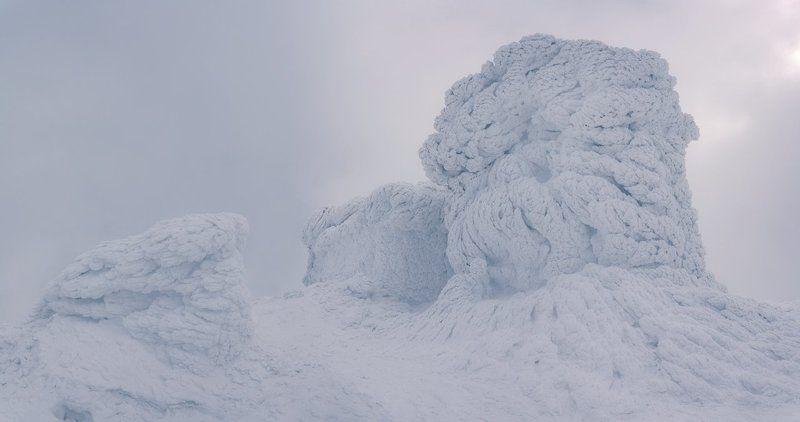 Белый слон...photo preview