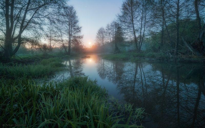 пейзаж, рассвет, лес, река, вода, деревья, татищево, долга, саратов Рассвет на Идолгеphoto preview