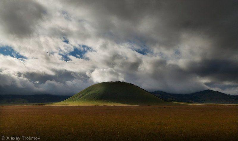 Монгольские степиphoto preview