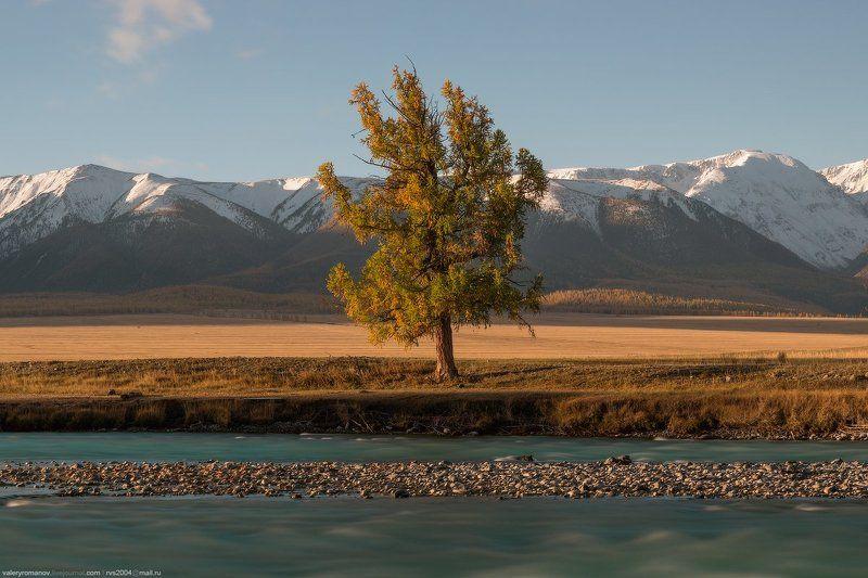 алтай, горы, река, бирюза, дерево, лед, степь, снег, небо, облака, белый, желтый, россия, Бирюзовое шоссеphoto preview