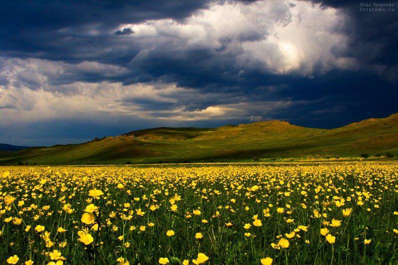 Тугнуйская долина в Бурятии.photo preview