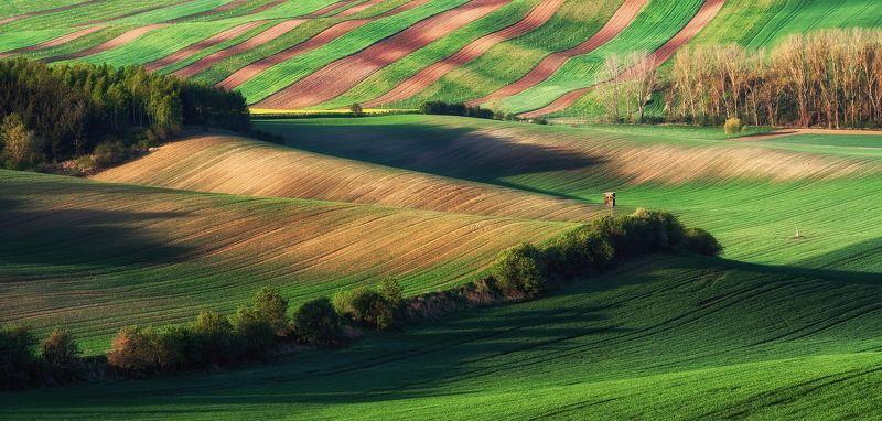 Моравия Чехия пейзаж поля путешествия холмы photo preview