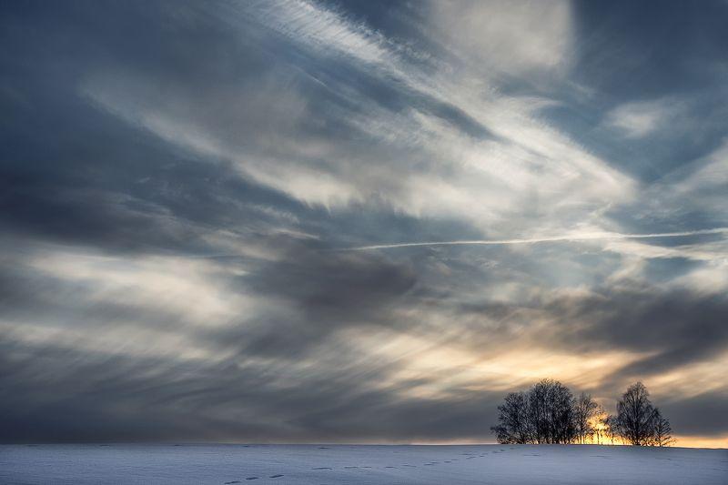 Зимний вечерphoto preview