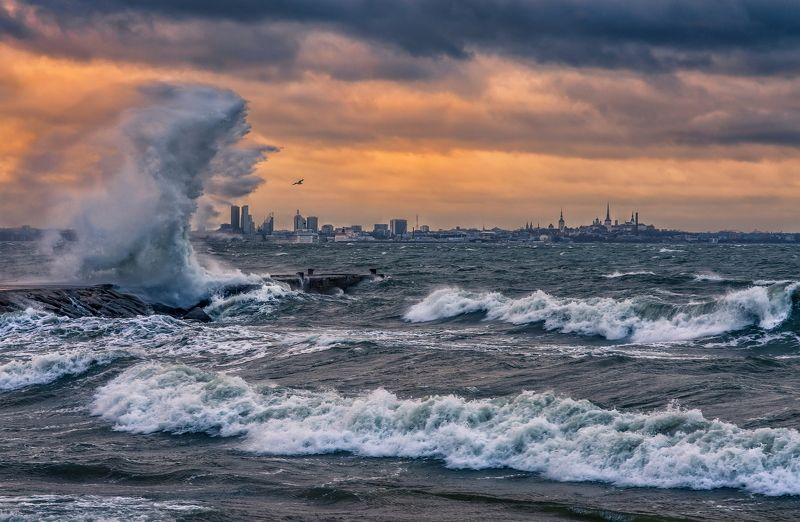 таллинн эстония балтика балтийское море финский залив пейзаж путешествие шторм ветер волны Финский заливphoto preview