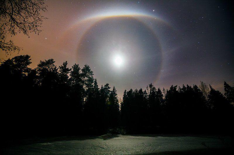 гало, луна, ночь, лес, озеро Божье окоphoto preview