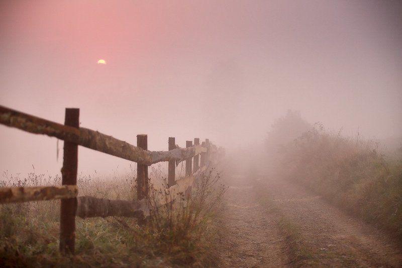 Карпаты, Горы, Осень, Сентябрь, Утро, Рассвет, Туман Сентябрьская рассветнаяphoto preview