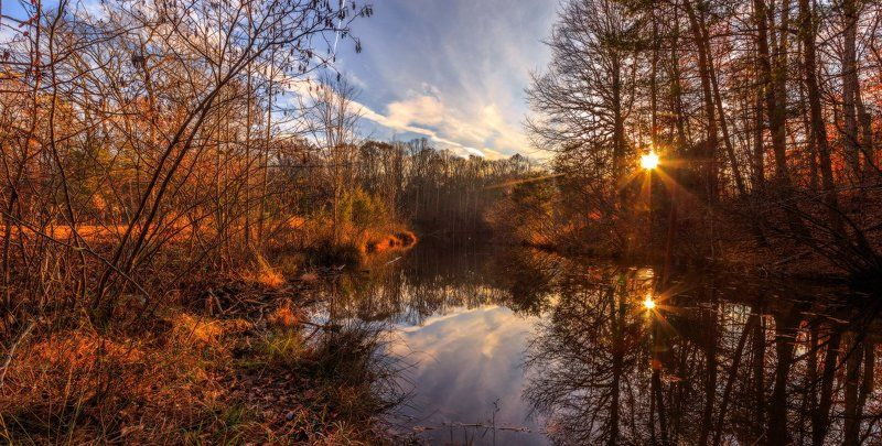 Осенний прудphoto preview
