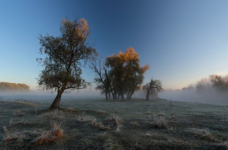 утро, туман, река, мороз, иней, осень День начинается туманом.photo preview