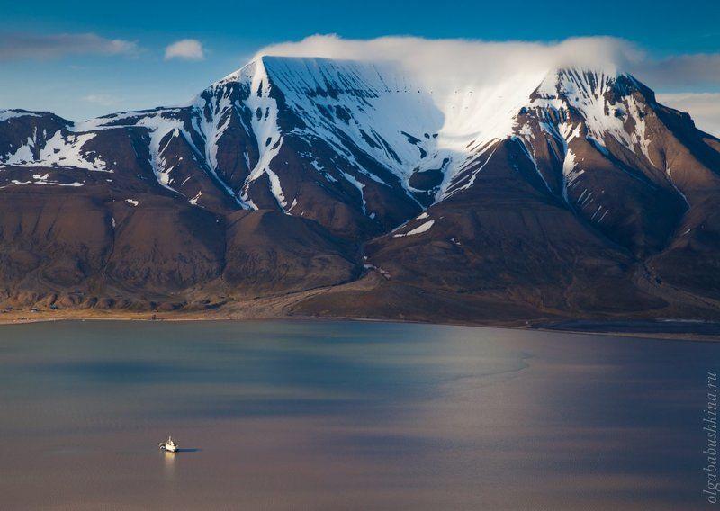 Арктикаphoto preview