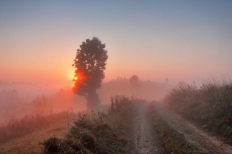 Карпаты, Горы, Осень, Сентябрь, Утро, Рассвет, Туман Сентябрь. Рассвет в Подобовцеphoto preview