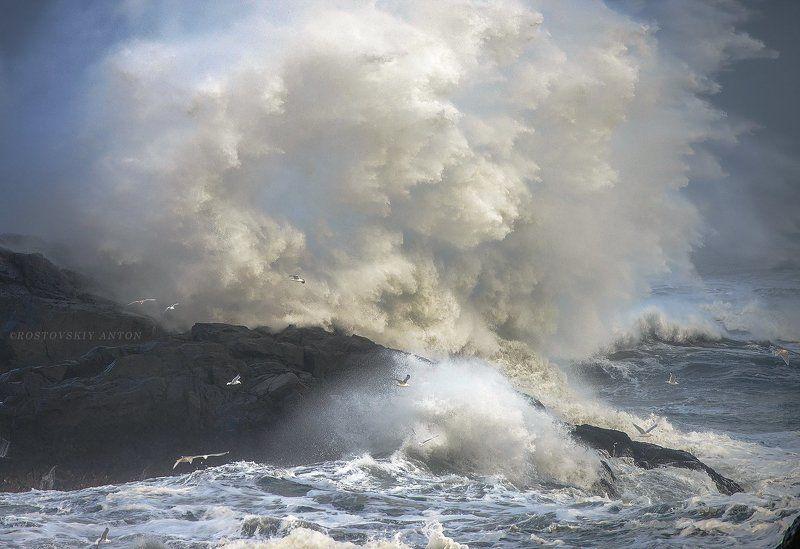 Iceland, Исландия, шторм Шторм в Исландииphoto preview