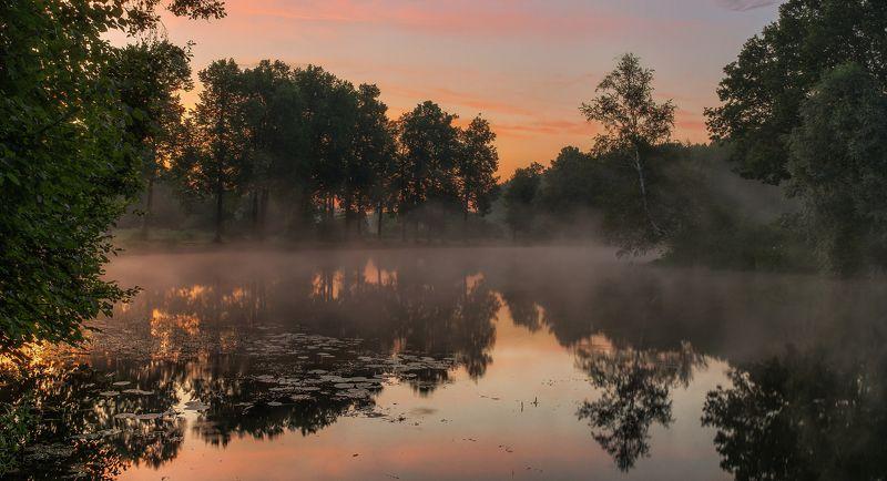 середниково, усадьба, подмосковье, пейзаж, утро, рассвет, туман, пруд Середниковоphoto preview