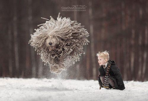 Волшебный полет дикой швабры