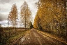 Осень-это не тоска.