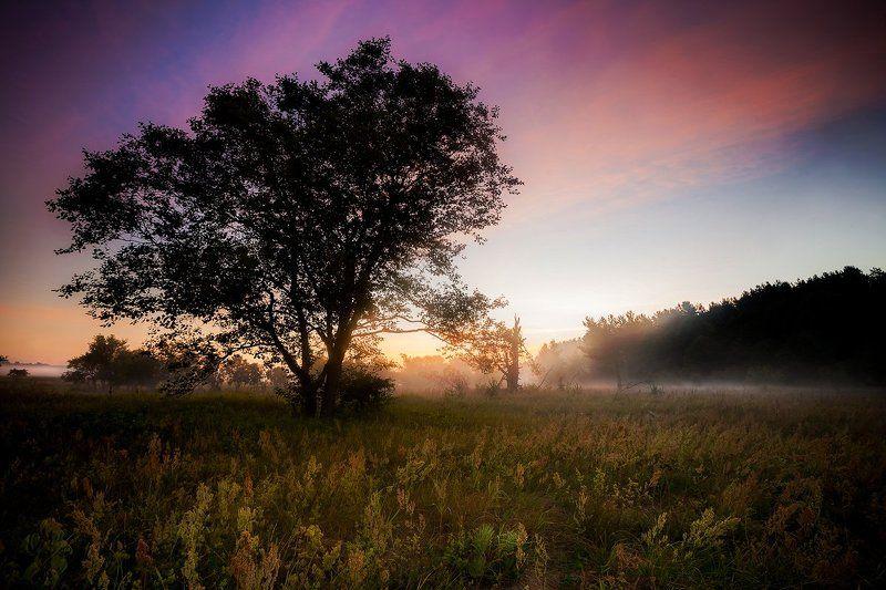 рассвет, утро, поход, друть Рассветphoto preview