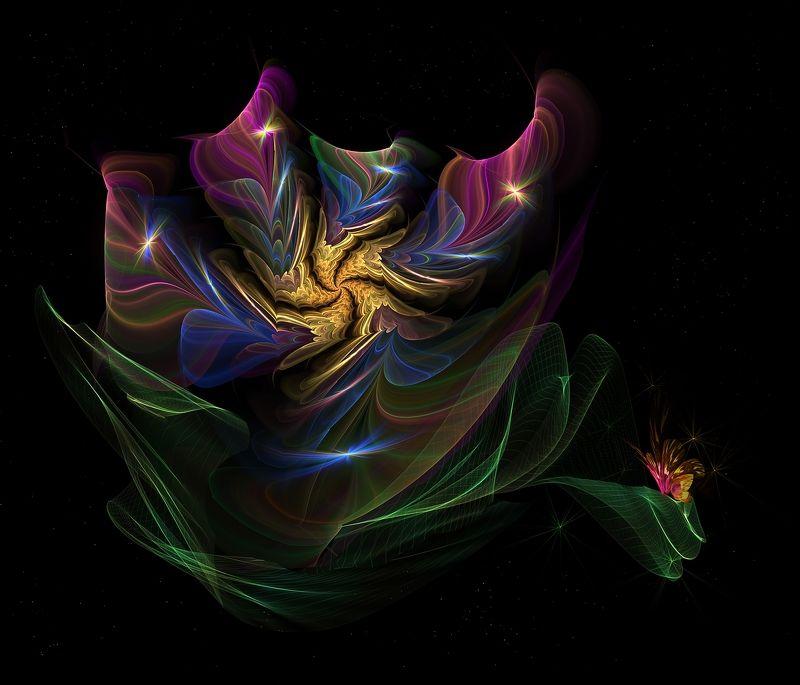 цветок,бабочка,краски,листья,абстрактныйцветок на чёрном фоне Magic flowerphoto preview