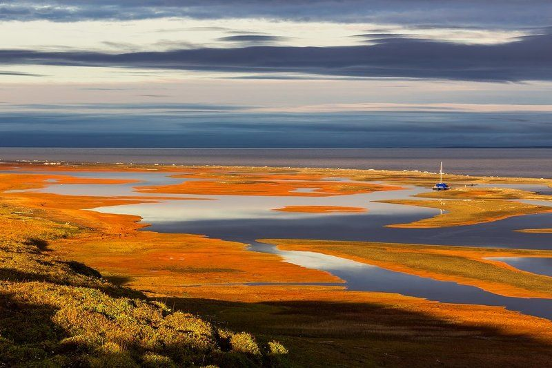таймыр, море лаптевых, красноярский край, арктика, тундра, экспедиция, море Таймырское летоphoto preview