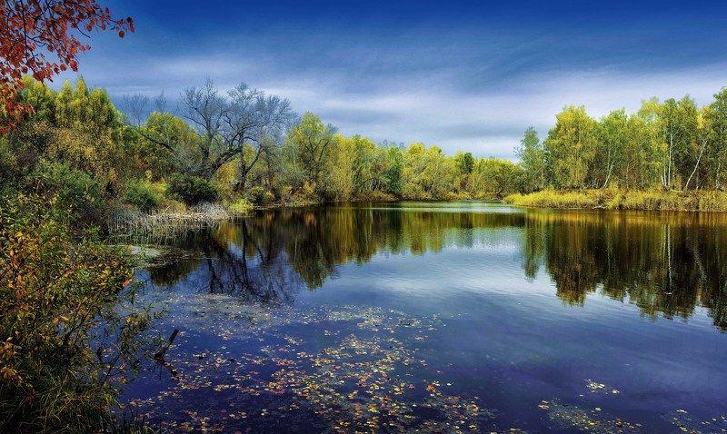лето,вода Зауральеphoto preview