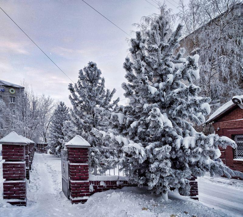 сибирь, томск, снег, зима, nexus 6p -40photo preview