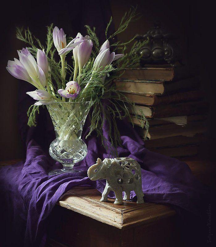 colchicum autumnale, цветы, безвременники Натюрморт с Colchicum autumnalephoto preview
