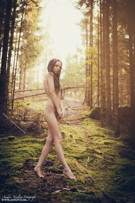 nude Forest Beautyphoto preview