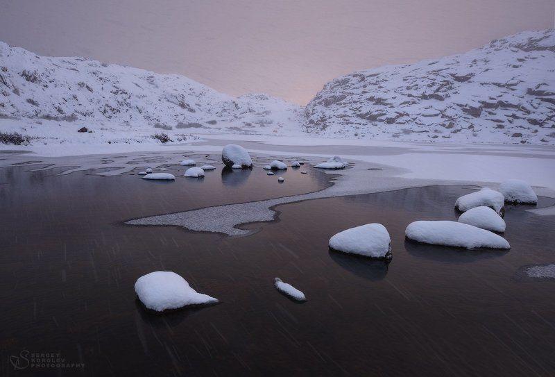 Снежная нежностьphoto preview